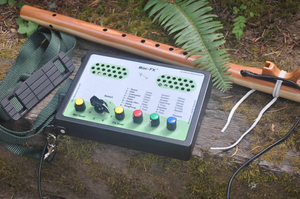 Mini FX Sound System